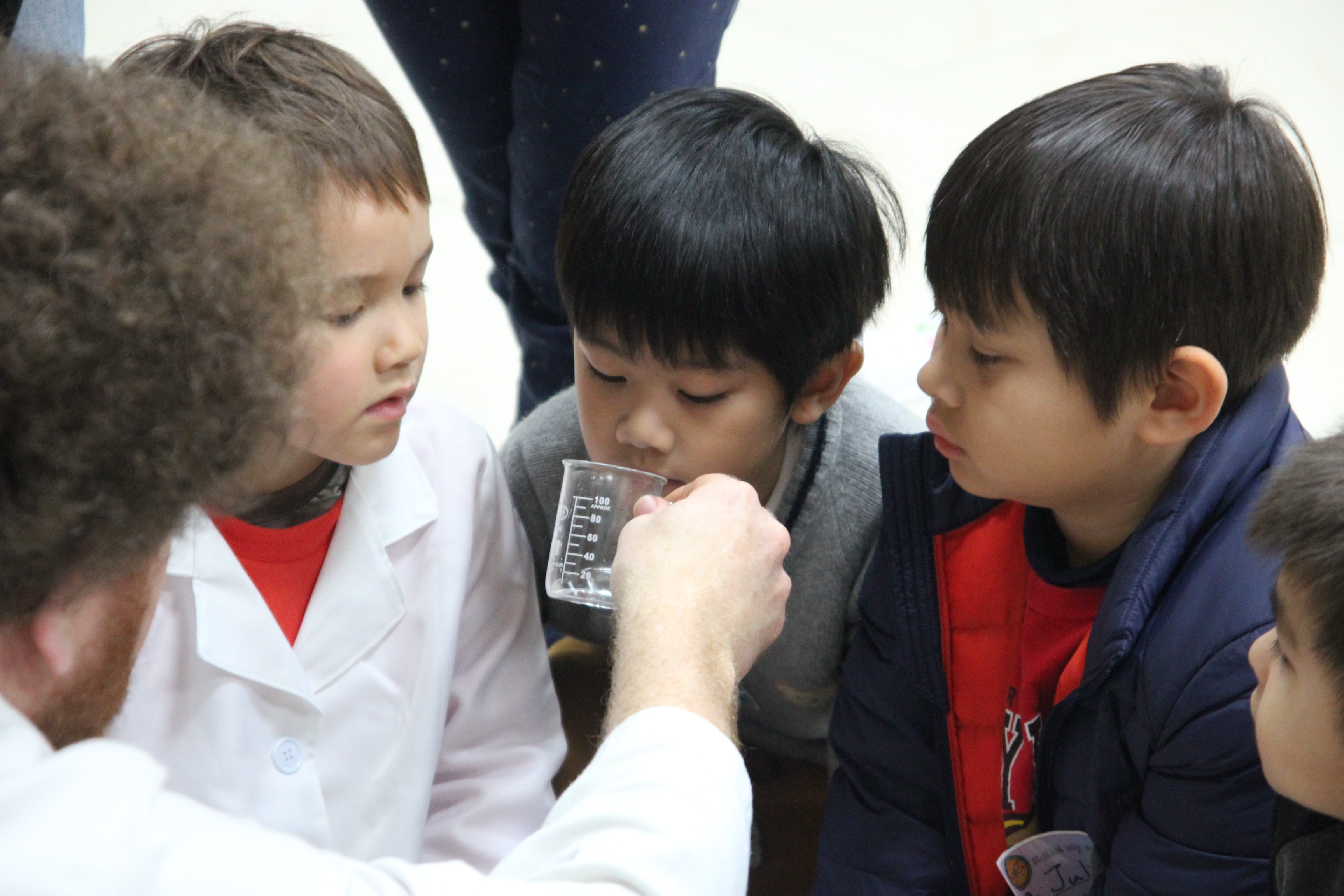 how to become a junior scientist