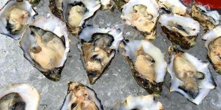 1207-oysters-gillardeau